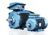 standard low voltage motor